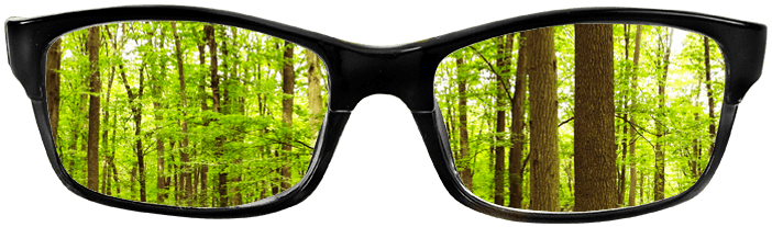 Focus on Your Brand Glasses
