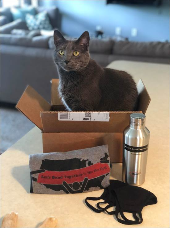 LBT Cat